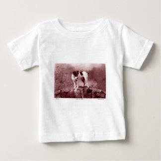 Sila dykare tee shirts