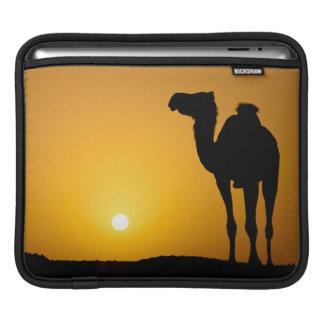 Silhouette av en vildkamel på solnedgången iPad sleeve