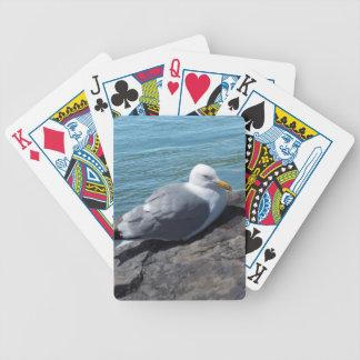 Sillfiskmås på stenbryggan spelkort