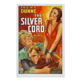 Silver binder med rep - affischen poster