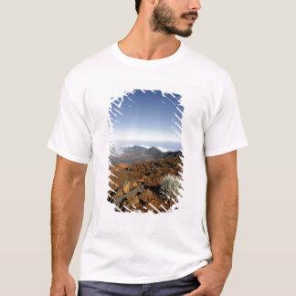 Silversword på Haleakala kraterkant från nära Tee Shirt