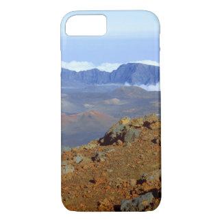 Silversword på Haleakala kraterkant från near 2