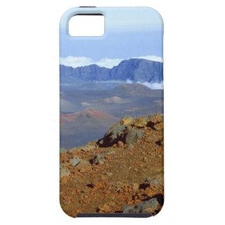 Silversword på Haleakala kraterkant från near 2 iPhone 5 Fodral