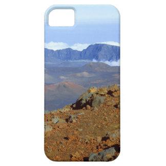 Silversword på Haleakala kraterkant från near 2 iPhone 5 Skal