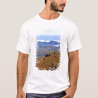Silversword på Haleakala kraterkant från near 2 T Shirts