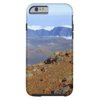 Silversword på Haleakala kraterkant från near 2 Tough iPhone 6 Fodral
