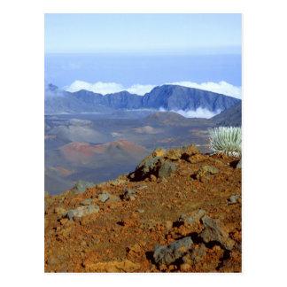 Silversword på Haleakala kraterkant från near 2 Vykort