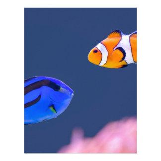 Simning för palettsurgeonfish- och clownfisk brevhuvud