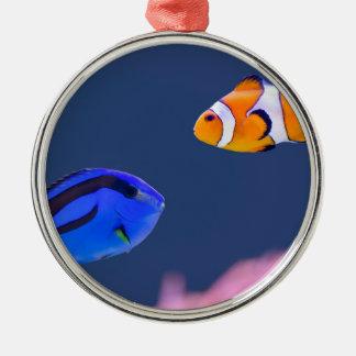 Simning för palettsurgeonfish- och clownfisk rund silverfärgad julgransprydnad