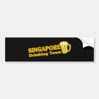 SINGAPORE BILDEKAL