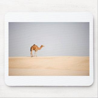 Singelkamel på arabiska sanddyner musmatta