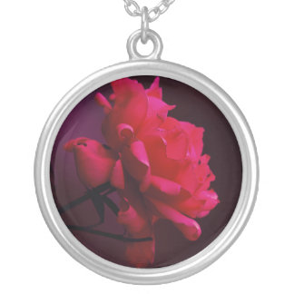 Singelröd ros silverpläterat halsband