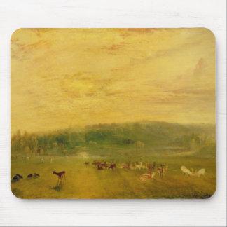 Sjön, Petworth: Solnedgång som slåss bockar Musmatta