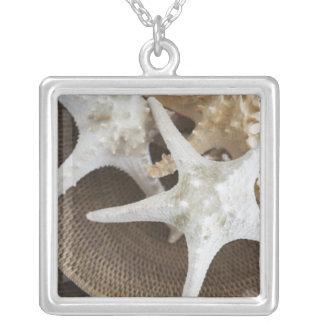 Sjöstjärna i en basket silverpläterat halsband