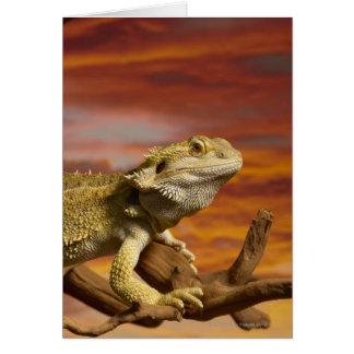 Skäggig drake (Pogona Vitticeps) på gren, Hälsningskort
