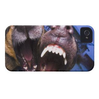 Skälla för hundar iPhone 4 Case-Mate cases