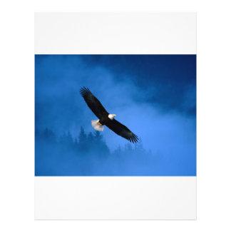 Skallig-Örn-Alaska Flygblad Designs