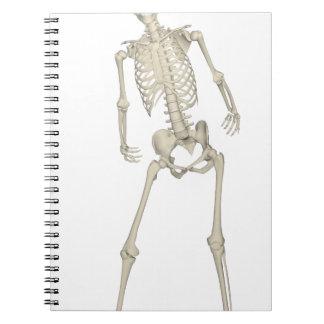 Skelett #7 anteckningsbok med spiral