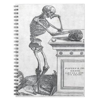 Skelett med skalleanteckningsboken anteckningsbok