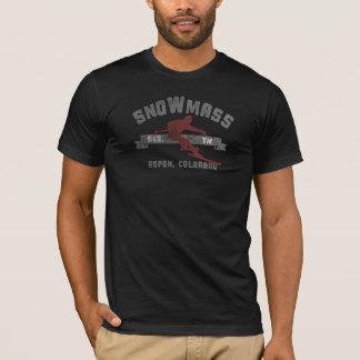 Skida Snowmass Colorado USA Tröja