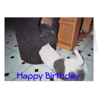 Skinn från din födelsedag hälsningskort