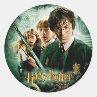 Skjuten Harry Potter Ron Hermione Dobbygrupp Rund Klistermärke