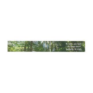 Skog av tropisk grönt för palmträd etikettband