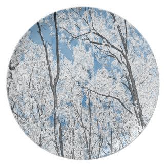 Skog i blått tallrik