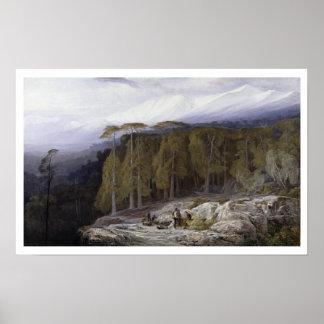 Skogen av Valdoniello, Corsica, 1869 (olja på c Poster