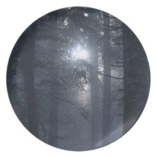 Skogen i dimmaNatur-älskare pläterar Tallrik