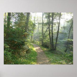 Skogväg i Danmark Poster