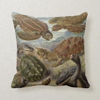 Sköldpadda och sköldpadda av Ernst Haeckel Kudde