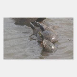 Sköldpaddababyar och mammor rektangulärt klistermärke