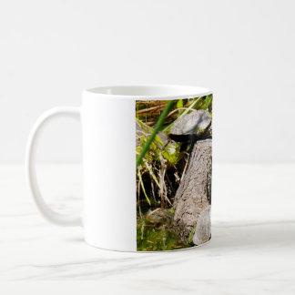 Sköldpaddor Kaffemugg