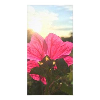 skönheten av blommor fotokort