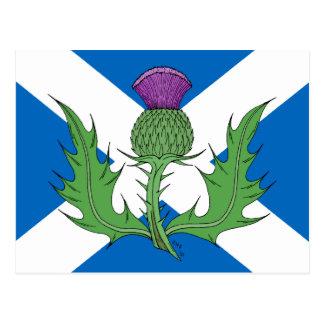 Skotsk Thistle och Saltire Vykort