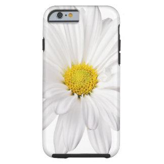 Skräddarsy daisy för vitdaisyblomma bakgrund