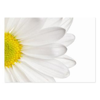 Skräddarsy daisy för vitdaisyblomma bakgrund set av breda visitkort