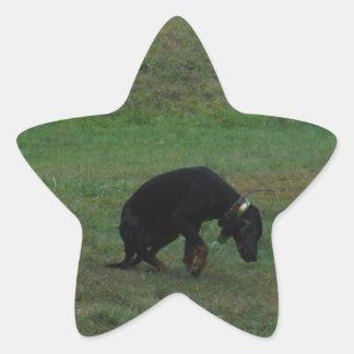 Skräddarsy produkten stjärnformat klistermärke