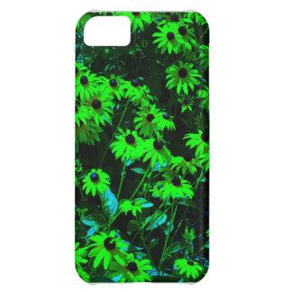 Skraj daisy iPhone 5C fodral