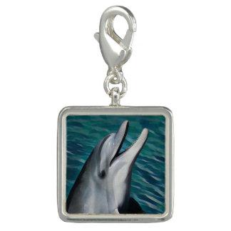 Skratta delfinen charm