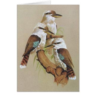 Skratta Kookaburra - Dacelogigas Hälsningskort