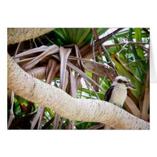 Skratta Kookaburra Hälsningskort