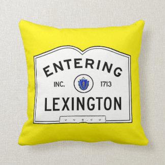 Skrivande in Lexington Kudde