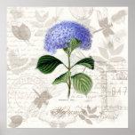 Skrivar botanisk konst ut för vintage