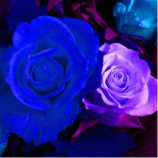 Skulptur för foto för blåttlilaro stående fotoskulptur