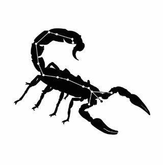 Skulptur för foto för Scorpiokonstellation/Zodiac Photo Cutout