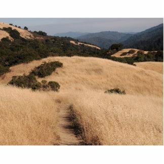 Skulptur för Kalifornien foothillsfoto Cut Outs