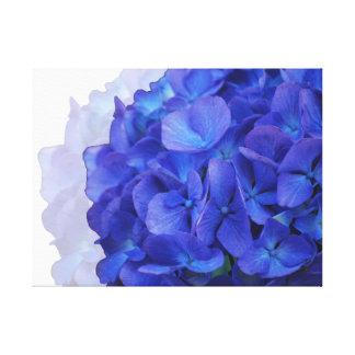 Slågen in kanfas för blått vanlig hortensia canvastryck