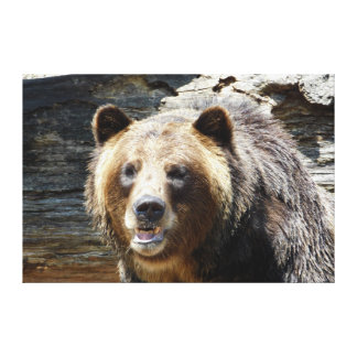 Slågen in kanvastryck för Grizzly björn